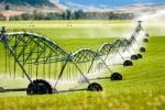 طرح گرمسیری تحول بزرگی در حوزه کشاورزی کرمانشاه ایجاد میکند