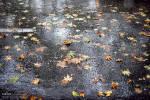 ثبت ۲۱.۵ میلیمتر بارش در شهر یاسوج/ بارندگی ادامه دارد