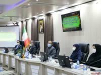 شناسایی ۱۸میلیون کم سواد در کشور/۲۷درصد مناطق استان اینترنت ندارد