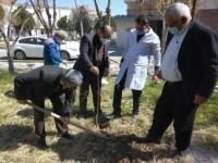 همزمان با روز درختکاری کاشت درخت توسط مدافعان سلامت شهرستان رباط کریم