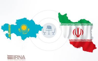 Iran-Kazakhstan discuss health cooperation via webinar